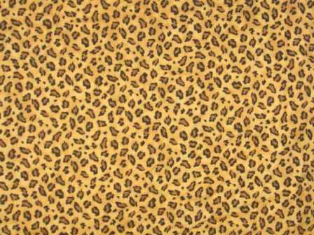 Animal Print Wall and Floor